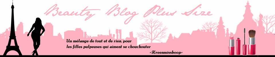 Blog plus size banniere2